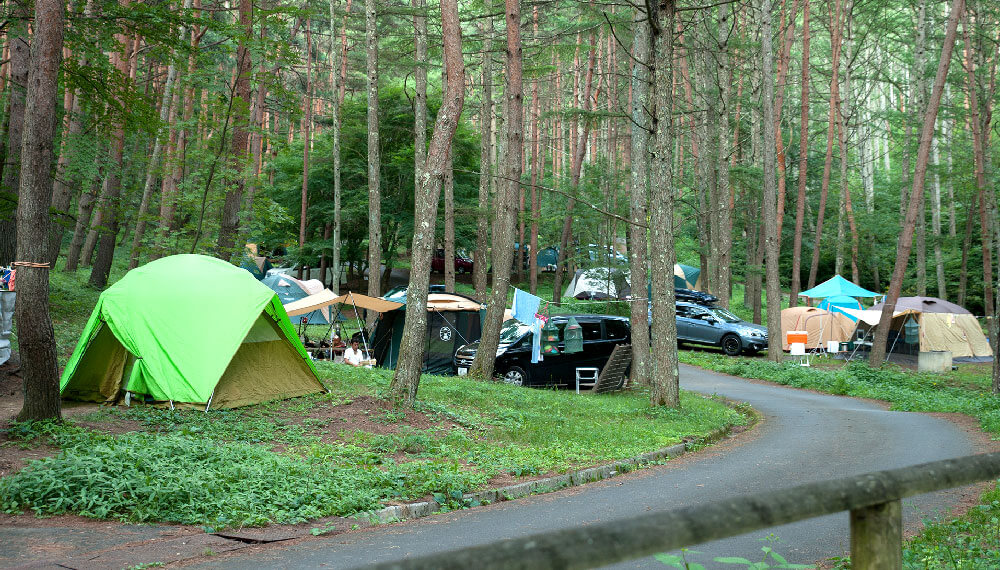 オートキャンプ場・フリーサイト